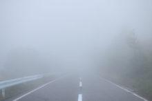 霧 道路 道